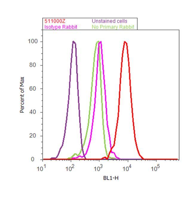 RhoGDI Antibody (51-1000Z) in Flow Cytometry