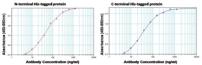 6x-His Tag Antibody (MA1-135) in ELISA