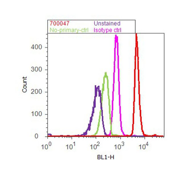 Phospho-SMAD1/SMAD5 (Ser463, Ser465) Antibody (700047) in Flow Cytometry