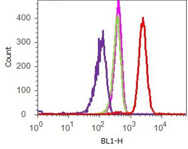 Vinculin Antibody (700062) in Flow Cytometry
