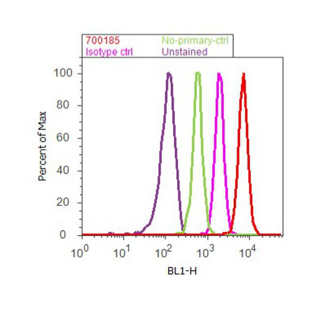 STAT4 Antibody (700185) in Flow Cytometry