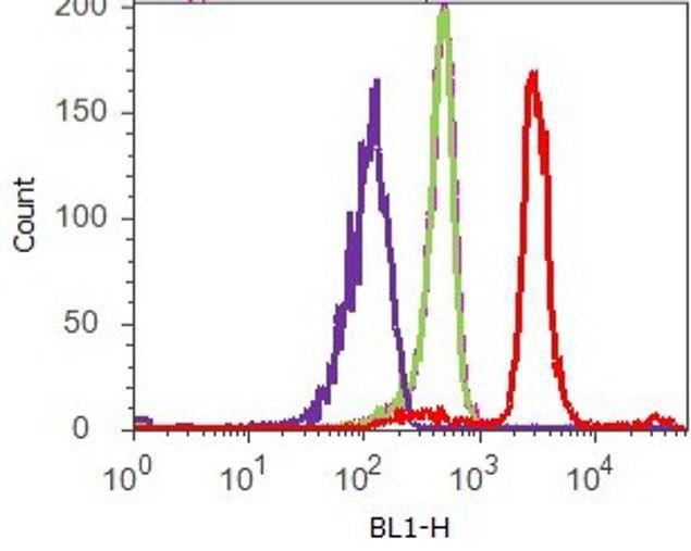 Phospho-4E-BP1 (Thr37) Antibody (700238) in Flow Cytometry
