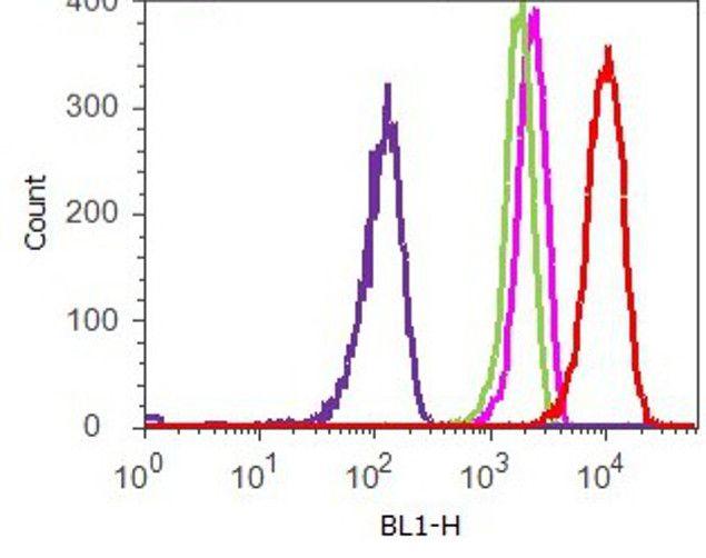 Phospho-STAT6 (Tyr641) Antibody (700247) in Flow Cytometry