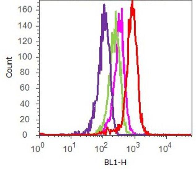 Phospho-AKT1 (Ser473) Antibody (700256) in Flow Cytometry