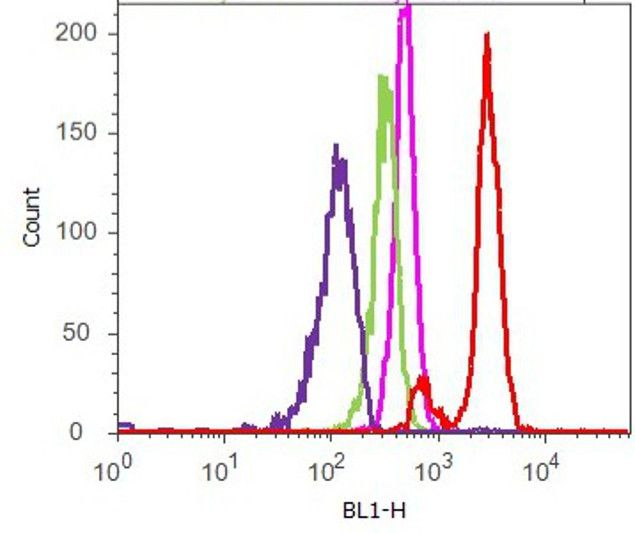 MEK2 Antibody (700829) in Flow Cytometry