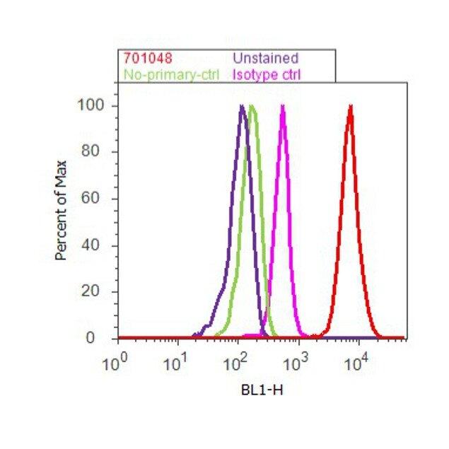 JNK1 Antibody (701048) in Flow Cytometry