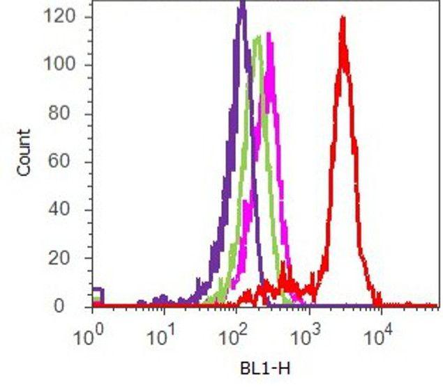 Phospho-STAT5 alpha (Tyr694) Antibody (701063) in Flow Cytometry