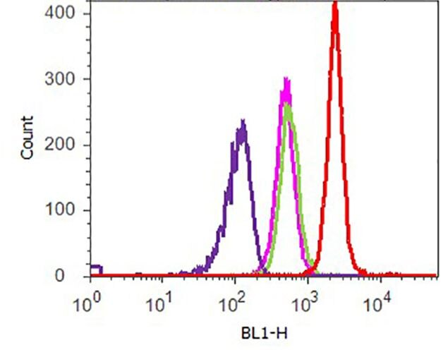 Phospho-p70 S6 Kinase (Thr389) Antibody (701064) in Flow Cytometry