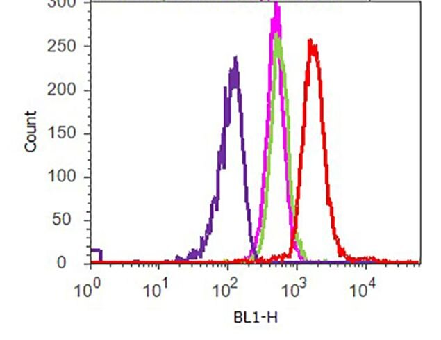 Phospho-p70 S6 Kinase (Thr421, Ser424) Antibody (701083) in Flow Cytometry