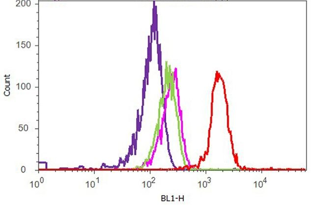 alpha Synuclein Antibody (701085) in Flow Cytometry