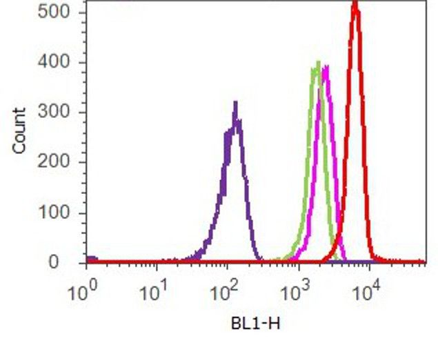 STAT6 Antibody (701110) in Flow Cytometry