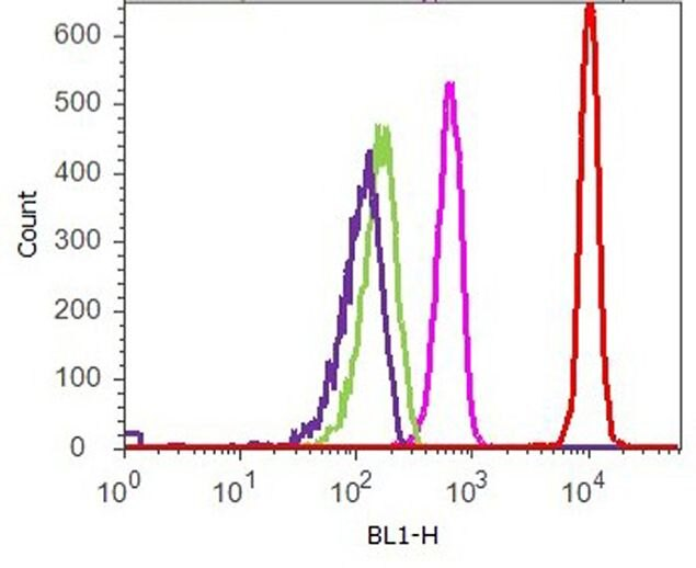 p21 Antibody (701151) in Flow Cytometry