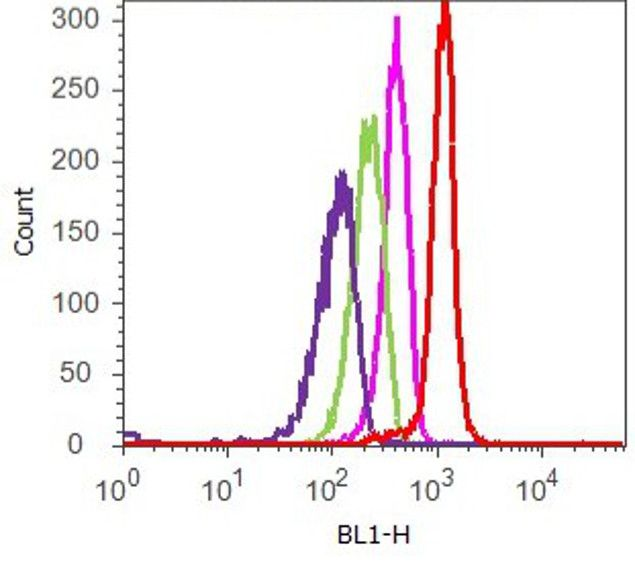 ERK1 Antibody (701183) in Flow Cytometry