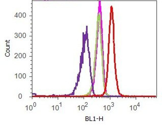 MMP3 Antibody (701285) in Flow Cytometry
