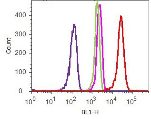 Phospho-STAT3 (Tyr705) Antibody (710093) in Flow Cytometry