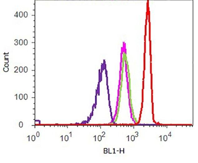 Phospho-p70 S6 Kinase (Thr389) Antibody (710095) in Flow Cytometry