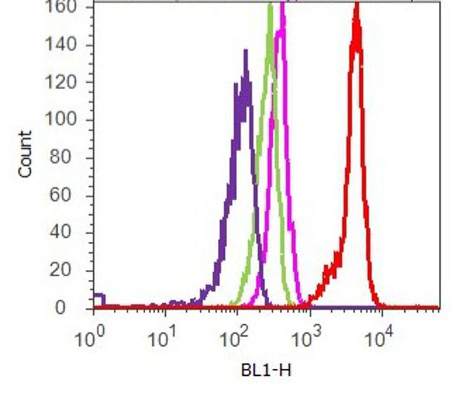 FAK Antibody (710119) in Flow Cytometry