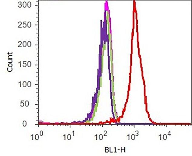 CREB Antibody (710149) in Flow Cytometry