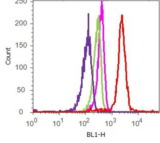 DISC1 Antibody (710203) in Flow Cytometry
