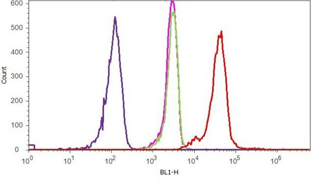 P-Selectin Antibody (710281) in Flow Cytometry