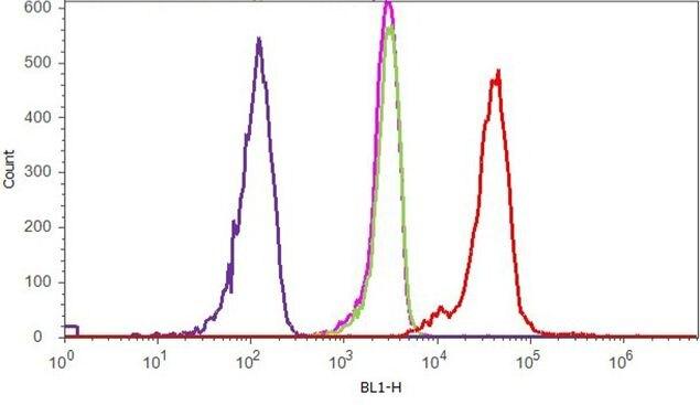 P-Selectin Antibody (710281) in Flow Cytometry