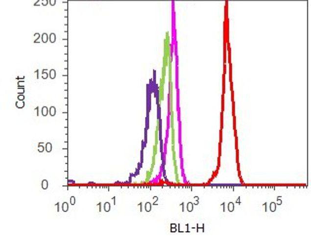 Acetyl-Histone H3 (Lys9) Antibody (710293) in Flow Cytometry