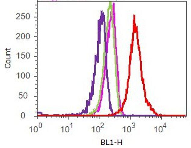 MMP16 Antibody (710333) in Flow Cytometry