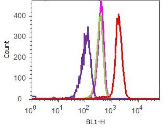 TIMP4 Antibody (710340) in Flow Cytometry
