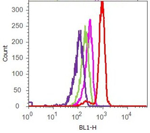 Cyclin D1 Antibody (710428) in Flow Cytometry
