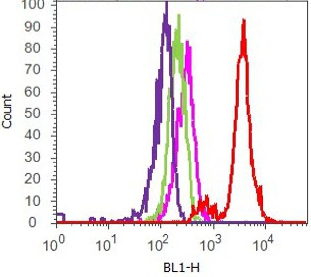 STAT5 beta Antibody (71-2500) in Flow Cytometry