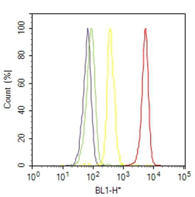PRMT3 Antibody (730020) in Flow Cytometry