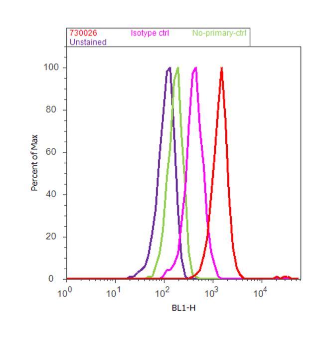 FALZ Antibody (730026) in Flow Cytometry