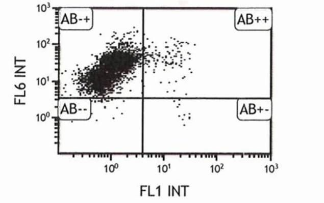 CD44 Antibody (A14713) in Flow Cytometry