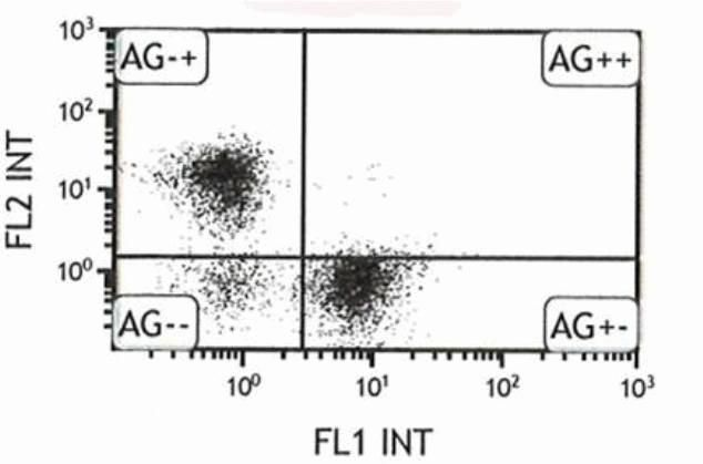 CD3e Antibody (A14714) in Flow Cytometry