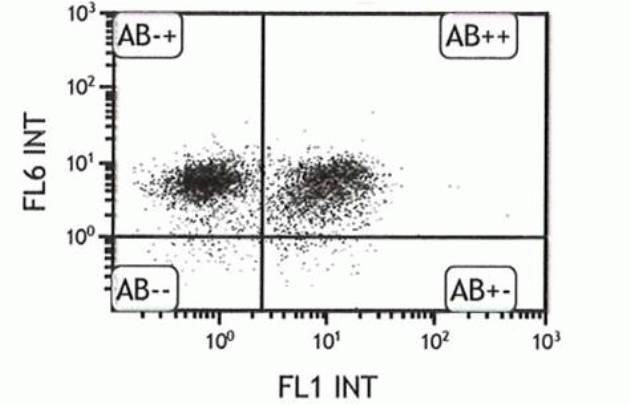 CD31 Antibody (A14716) in Flow Cytometry