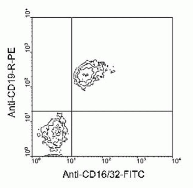 CD16/CD32 Antibody (A14717) in Flow Cytometry