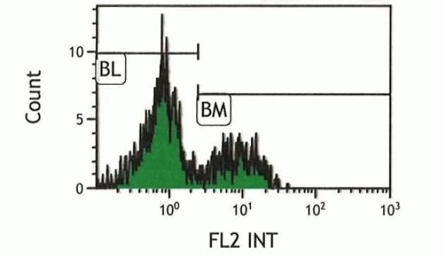 NK1.1 Antibody (A14738) in Flow Cytometry