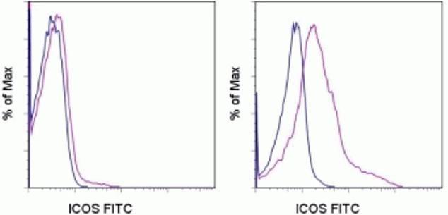 ICOS Antibody (A14754)