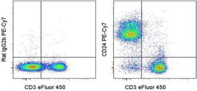 CD24 Antibody (A14776)