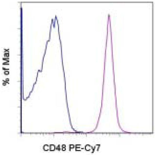 CD48 Antibody (A14777)