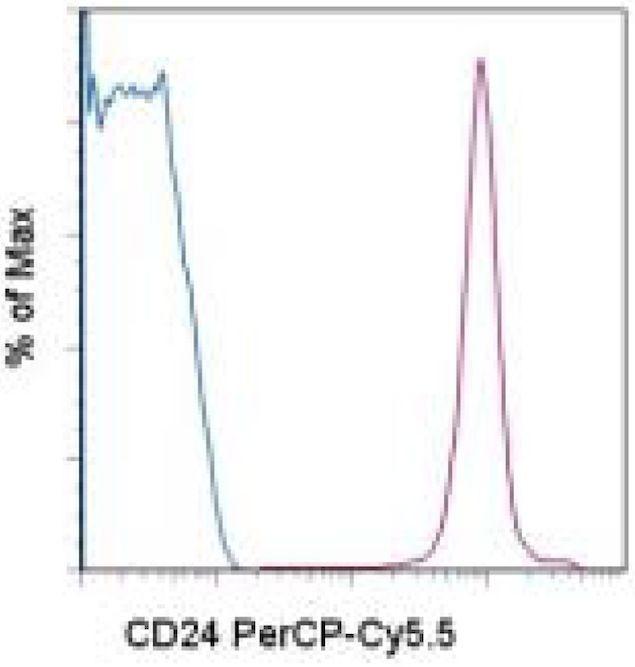 CD24 Antibody (A14790)