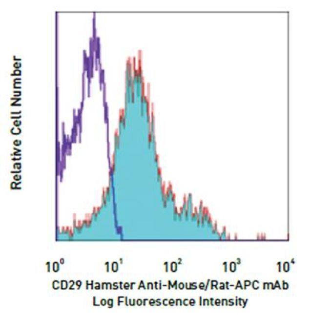 Integrin beta-1 / CD29 Antibody (A14888)