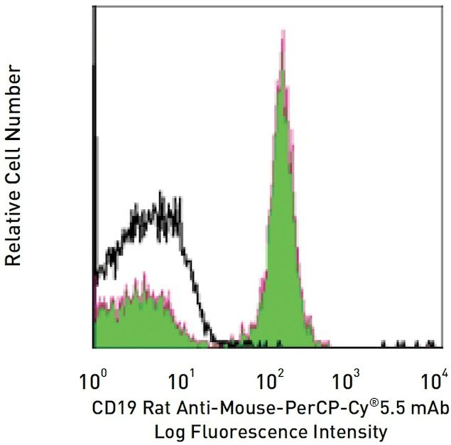 CD19 Antibody (A14906)