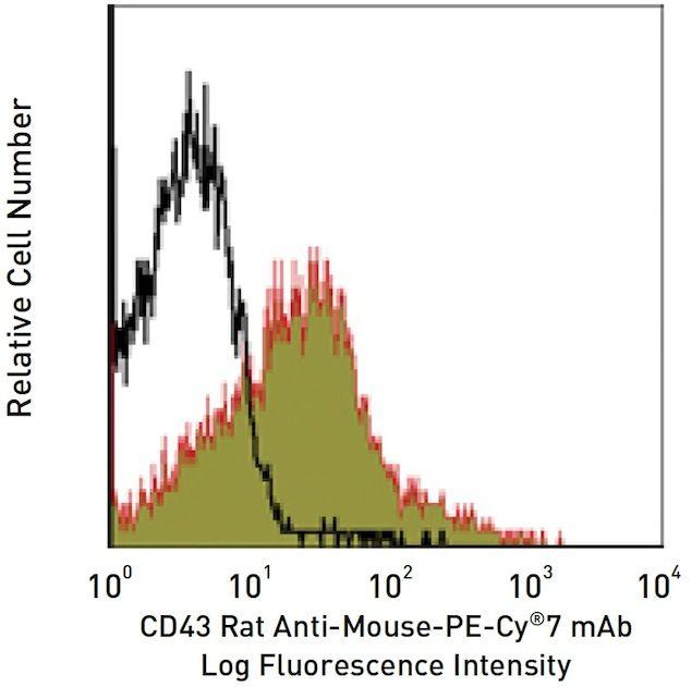CD43 / SPN Antibody (A14914)