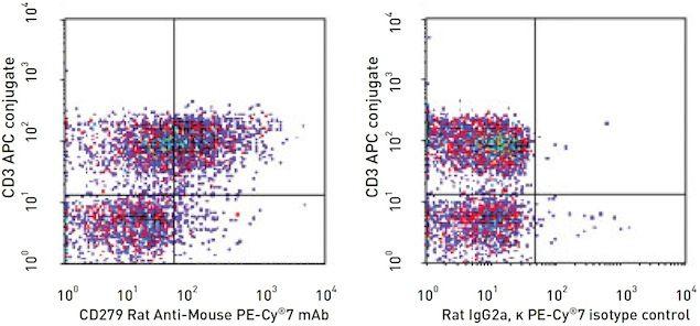 PD-1 / CD279 Antibody (A14936)