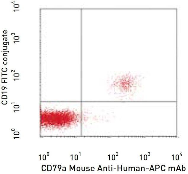CD79a Antibody (A14946)