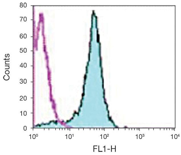 CD2 Antibody (A15811)