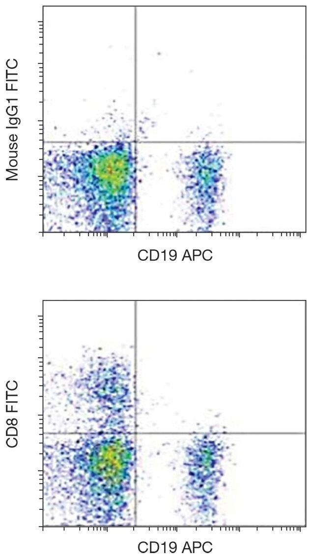CD8 alpha Antibody (A15814)