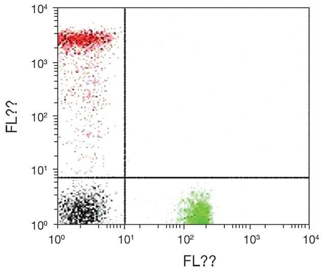 CD8 alpha Antibody (A15827)