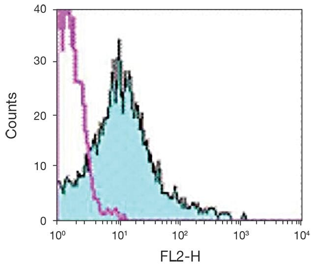 CD18 Antibody (A15832)